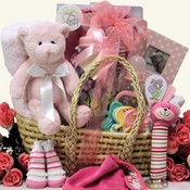 Baby's Essentials Baby Girl's Gift Basket
