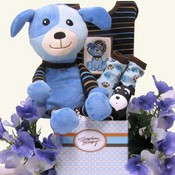 Baby Boys Gift Baskets USA